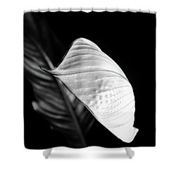 Peace Lily Minimalism In Black And White Shower Curtain