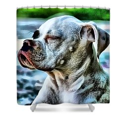 Shower Curtain featuring the digital art Peace Of Mind by Kathy Tarochione