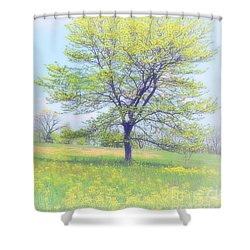 Peace On The Hillside Shower Curtain