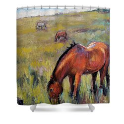 Peace On The Mountain Shower Curtain