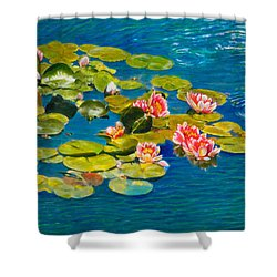 Peaceful Belonging Shower Curtain by Michael Durst