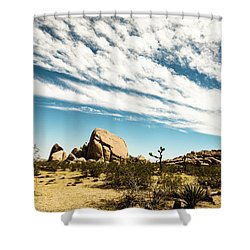 Peaceful Boulder Shower Curtain