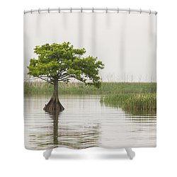 Shower Curtain featuring the photograph Peaceful Feeling by Julie Andel
