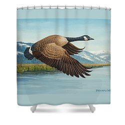 Peaceful Flight Shower Curtain