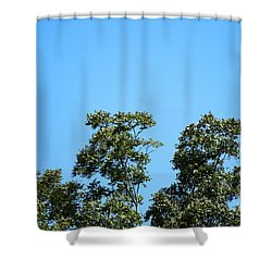 Shower Curtain featuring the photograph Peaceful Moment by Ray Shrewsberry