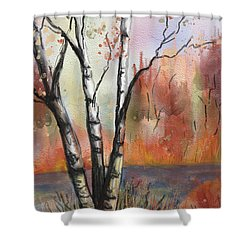Peaceful River Shower Curtain by Annette Berglund