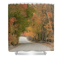 Shower Curtain featuring the photograph Peaceful Sierra Morning by Sandra Bronstein
