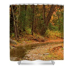 Peaceful Stream Shower Curtain by Roena King