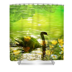 Peaceful Swan In Lake With Flowers Shower Curtain