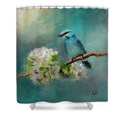 Peaceful Symphony  Shower Curtain by Colleen Taylor