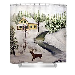 Peaceful Winter Day Shower Curtain by Timothy Smith