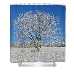 Peaceful Winter Shower Curtain by Susan Leggett