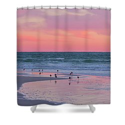 Peaceful Witnesses  Shower Curtain