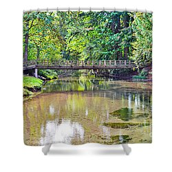 Peacefull Solitude Shower Curtain