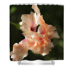 Peach Bliss Shower Curtain