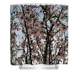 Peach Blossoms Shower Curtain by Diamante Lavendar