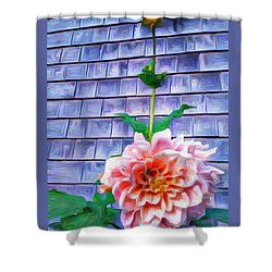 Peach Dahlia In Oil Shower Curtain