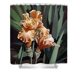 Peach Iris Shower Curtain