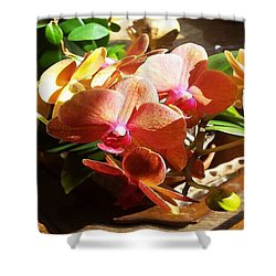 Peach Orchid Blossoms Shower Curtain