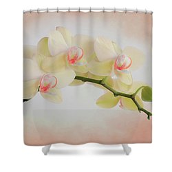 Peach Orchid Spray Shower Curtain