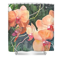 Peach Orchids Shower Curtain by Yolanda Koh