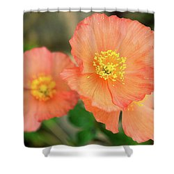 Peach Poppies Shower Curtain by Sally Weigand