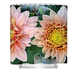 Peachy Chrysanthemums Shower Curtain