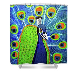 Peacock #3 Shower Curtain