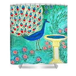 Peacock And Birdbath Shower Curtain by Sushila Burgess