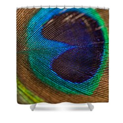 Peacock Feather Macro Detail Shower Curtain
