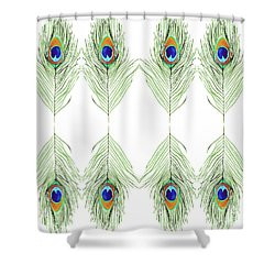 Peacock Feathers Shower Curtain by D Renee Wilson