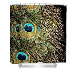 Peacock Feathers Shower Curtain by Sabrina L Ryan