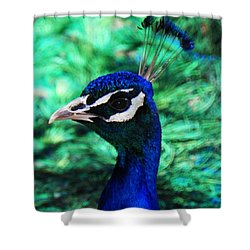 Shower Curtain featuring the photograph Peacock by Joseph Frank Baraba
