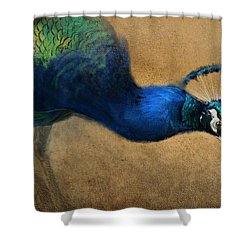 Peacock Light Shower Curtain