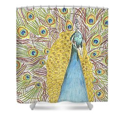 Shower Curtain featuring the drawing Peacock One by Arlene Crafton