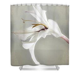 Peacock Orchid Shower Curtain