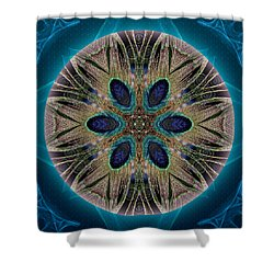 Peacock Power Shower Curtain
