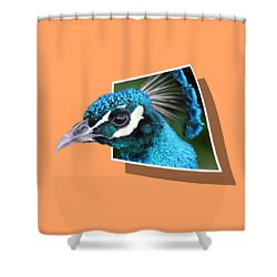 Peacock Shower Curtain by Shane Bechler