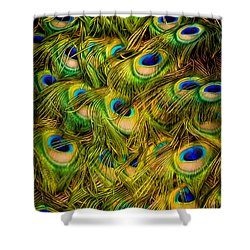 Shower Curtain featuring the photograph Peacock Tails by Rikk Flohr