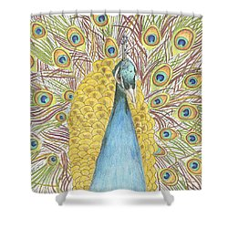 Shower Curtain featuring the drawing Peacock Two by Arlene Crafton