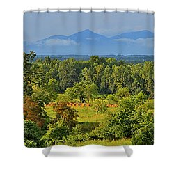 Peaks Of Otter After The Rain Shower Curtain by The American Shutterbug Society