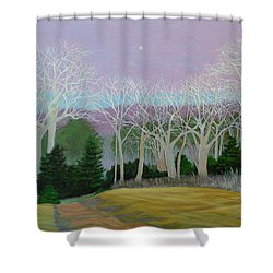 Pearlescence Shower Curtain