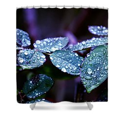 Pearls Of Nature Shower Curtain by Bernd Hau