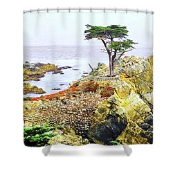 Pebble Beach Lone Cypress Tree Shower Curtain