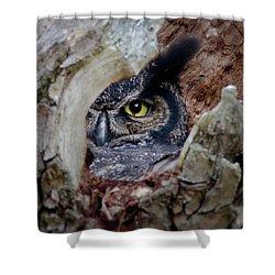 Peek A Boo Owl Shower Curtain