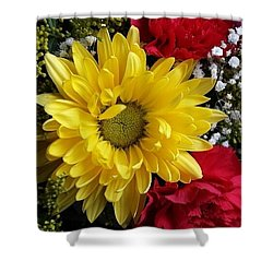 Peek A Boo Sunshine Shower Curtain