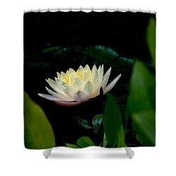 Peekaboo Lemon Water Lily Shower Curtain