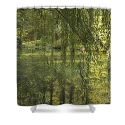 Peeking Through The Willows Shower Curtain by Linda Geiger