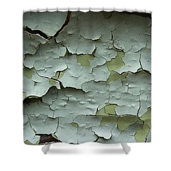 Shower Curtain featuring the photograph Peeling 2 by Mike Eingle