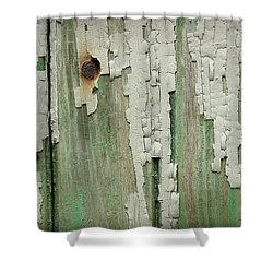 Shower Curtain featuring the photograph Peeling 3 by Mike Eingle